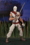 Storm Shadow (2012)