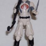 Ninja Showdown Storm Shadow