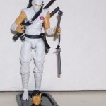 Ultimate Storm Shadow